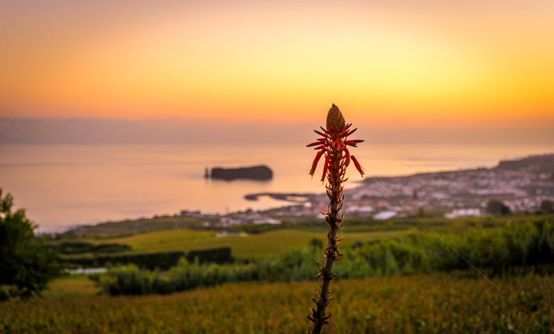 Azores Sao Miguel Island Sunset Landscape Photography 12 By Messagez com