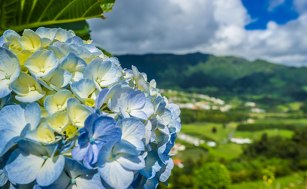 Portugal Azores Sao Miguel Island Photography 3 By Messagez com