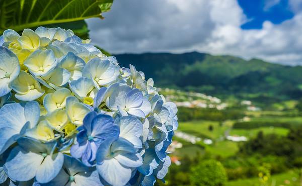 Portugal Azores Sao Miguel Island Photography 3 By Messagez com