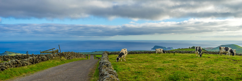 Original Azores Terceira Island Landscape Photography 60 By Messagez com