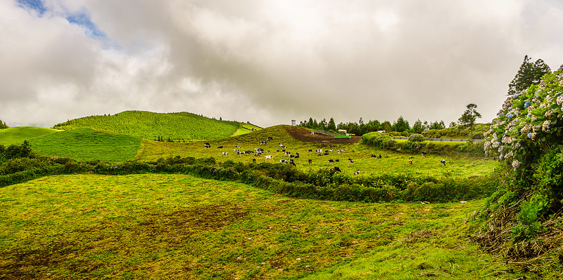 Portugal Azores Sao Miguel Island Photography 37 By Messagez com