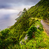 Road to The Fajãs in Azores Sao Jorge Island Photography By Messagez com