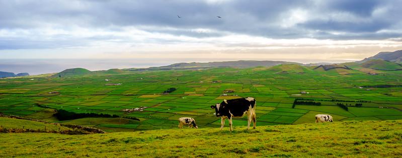 Original Terceira Island Top Viewpoint Landscape Photography 2 By Messagez com