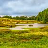 Original Azores Terceira Island Landscape Photography 50 By Messagez com