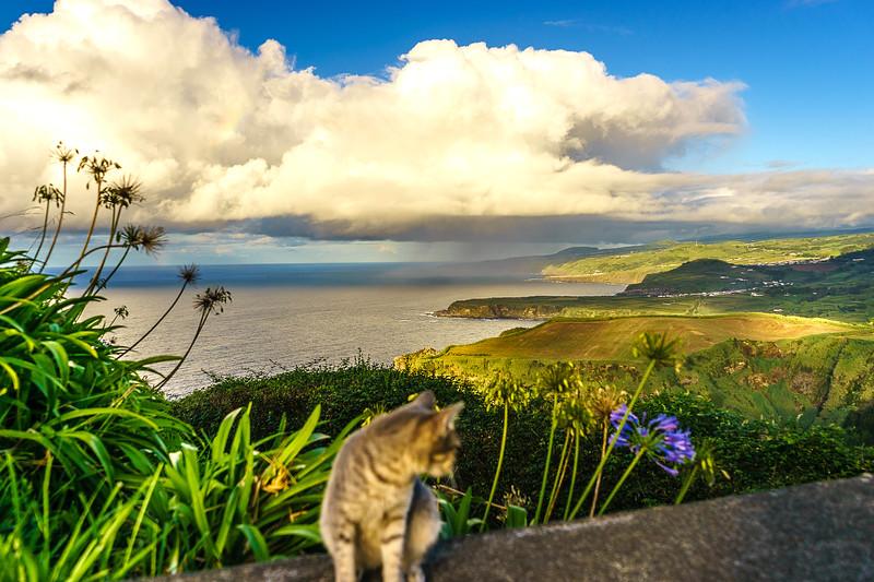 Portugal Azores Sao Miguel Island Photography 55 By Messagez com