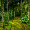 Best of Azores Sao Miguel Island Panorama Photography 9 By Messagez com