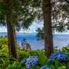 Looking to Pico Island in Azores Photography By Messagez com
