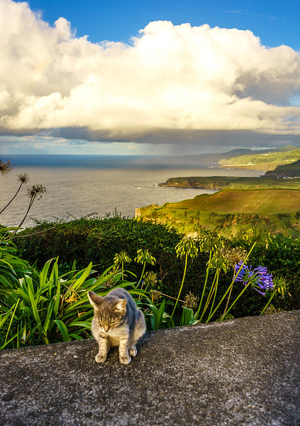Portugal Azores Sao Miguel Island Photography 56 By Messagez com