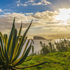 Original Azores Terceira Island Landscape Photography 18 By Messagez com