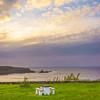Original Azores Terceira Island Landscape Photography 44 By Messagez com