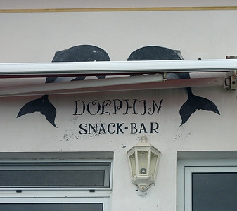 Dolphin Bar Graciosa 2016-05-27 DSCN3159
