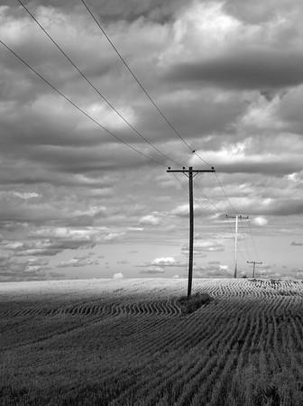 Cut Field and Power Lines Saskatchewan
