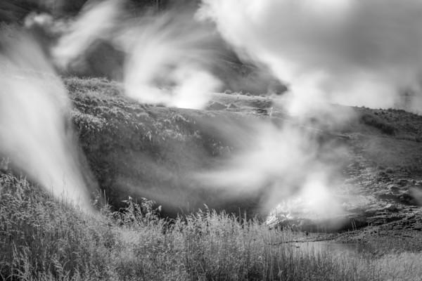 Geyser Field in Wind Yellowstone
