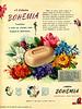 BOHEMIA perfumed soap 1950 Argentina 'El jabón Bohemia confiere a todo su cuerpo una fragancia deliciosa'