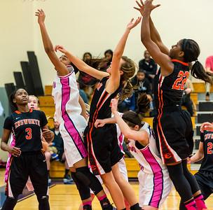 Girls Basketball 1-31-17