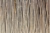 stick white wood trunk fence tropical Mayan wall