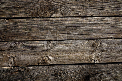 grunge weathered wooden board of gray wood