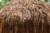 Hut palapa mexican jungle Mayan house roof wall