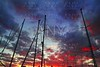 dramatic marina sailboat mast sunset sky backlight