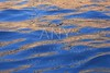 Abstract golden reflection blue water shapes
