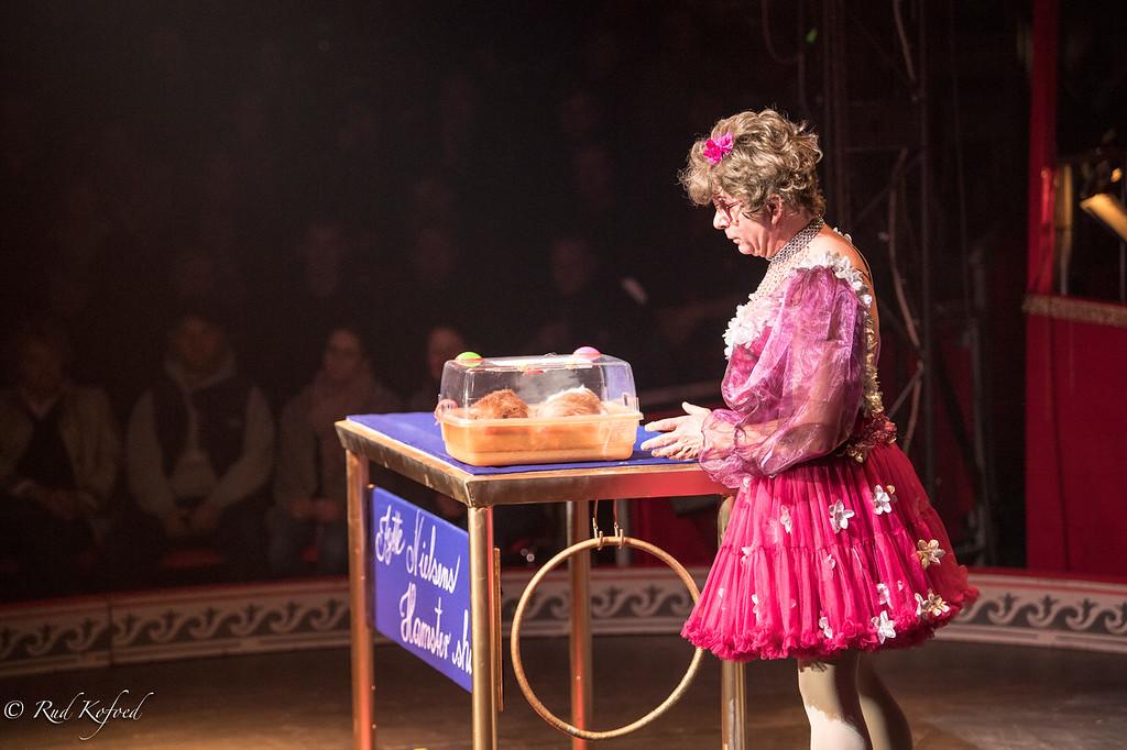 Jytte Nielsens Hamster Show