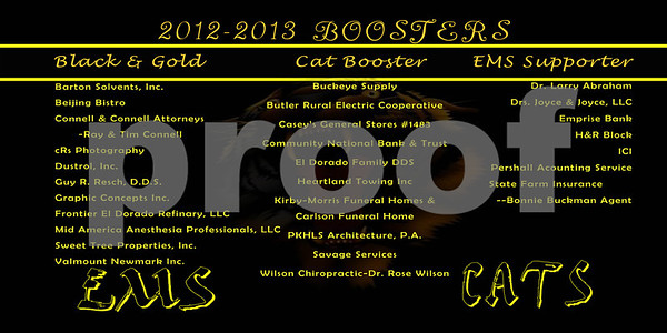 Booster20125