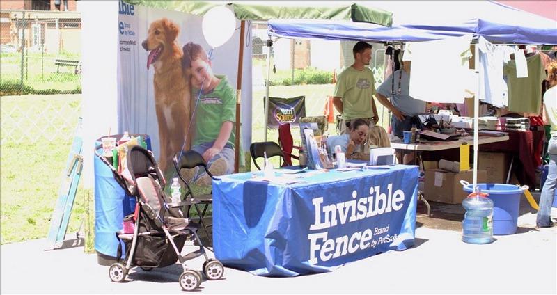 invisable fence 3