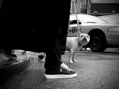 SoHo – New York City, 2009