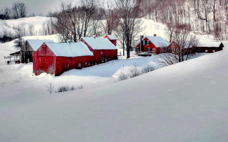 Jenne Farm, Reading, Vt #7