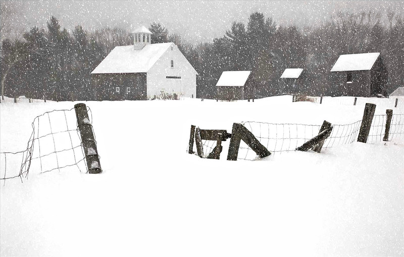 Muster field Farm , N.Sutton, NH in snow