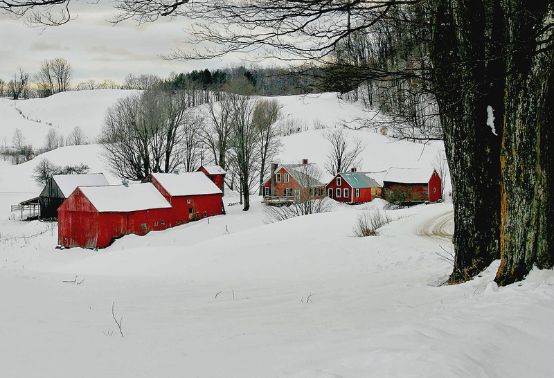 Jenne Farm, Reading, Vt #4