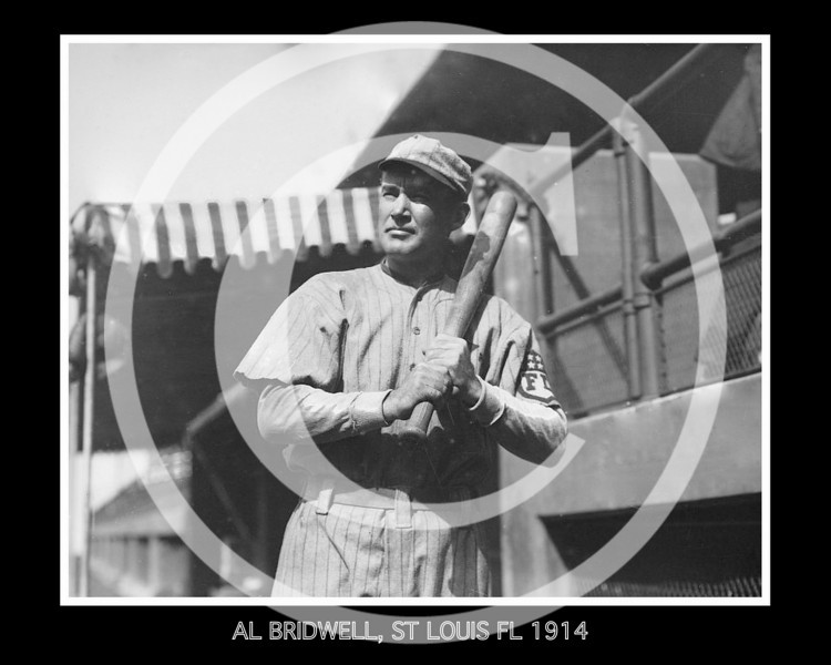 Al Bridwell, St. Louis Terriers, Federal League, 1914.