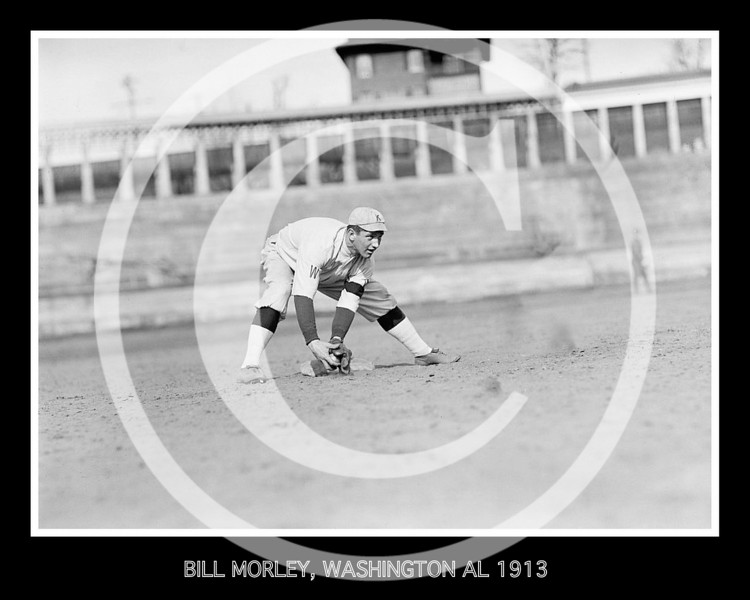 BILL MORLEY, WASHINGTON AL PROSPECT, WEARING KNOXVILLE REDS, APPALACIAN LEAGUE, UNIFORM 1913