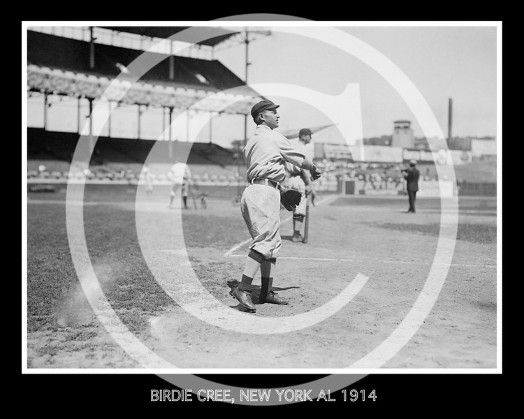 Birdie Cree, New York Yankees AL,  1914.