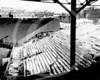 Fenway Park, Boston Red Sox AL. Men costructing bleachers in preparation for World Series 1912.