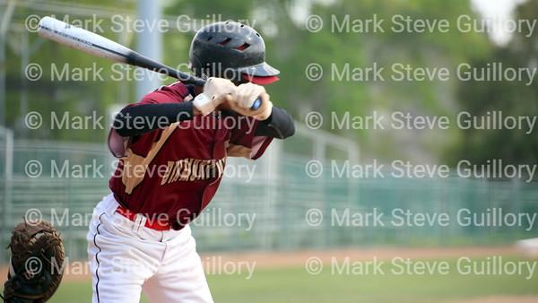 Baseball - AABL - 031917 Diamondbacks v White Sox 006