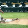 Baseball - AABL - Angels v White Sox 100
