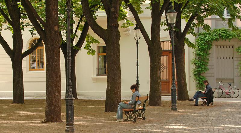 Münsterplatz - unter den Bäumen