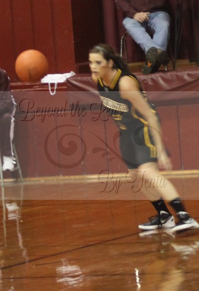 Goreville Lady Blackcats Basketball 2011-2012