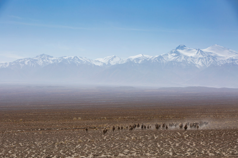 Det tibetanske plateu,