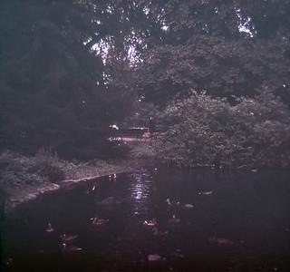 1967 Slide Scans