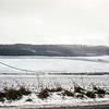 Winter scene near Rothwesten, Germany, 1968