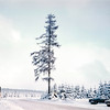 Winter in the Harz Mountains, Germany 1968