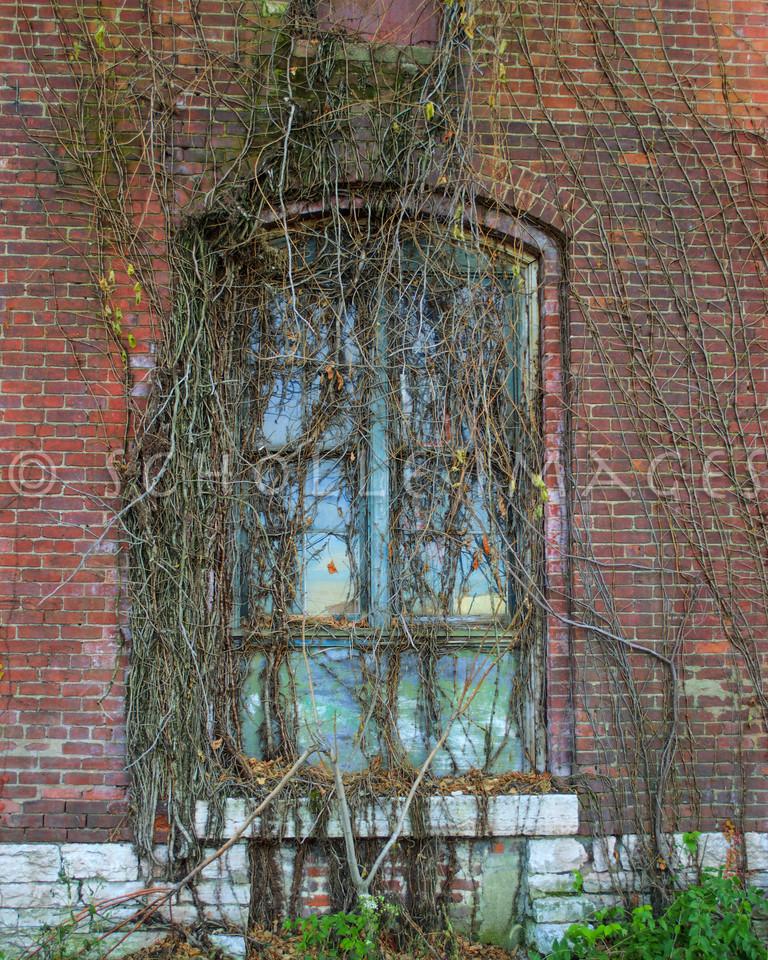 Window DSC_2901_tonemapped