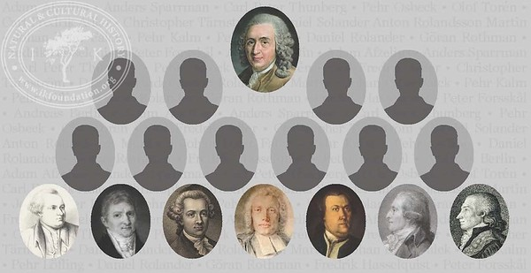 Naturalist Carl Linnaeus and his 17 apostles.