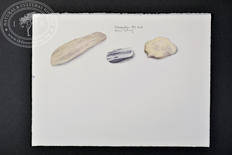 """Rock samples, Poolepynten, Svalbard   7.9.2017   """"I want to convey what I see with immediacy and simplicity to make the viewer feel present on the Arctic scene.""""   Måns Sjöberg."""