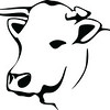 Free Clipart Of A Black and White Cow