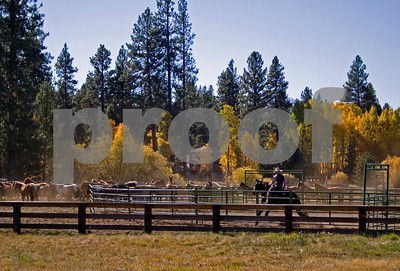 102308 cowboy fall IMG_3772