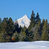 Mt Jefferson from Big Meadow range-KateThomasKeown_KTK6209