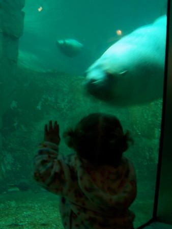 <b>Feb. '08: Robyn @ the Aquarium</b>